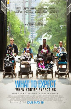 孕期完全指导 What to Expect When You're Expecting (2012)