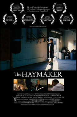 重拳 The Haymaker (2010)