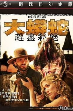蛇机四伏 Copperhead (2008)