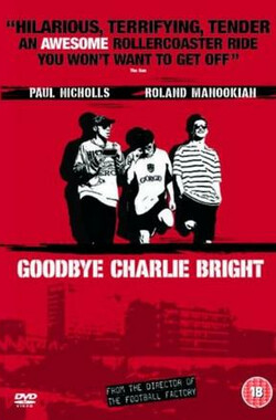 光猪四条友 Goodbye Charlie Bright (2001)