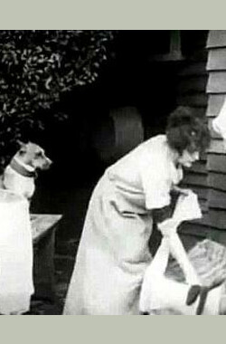 Mabel and Fatty's Wash Day (1915)