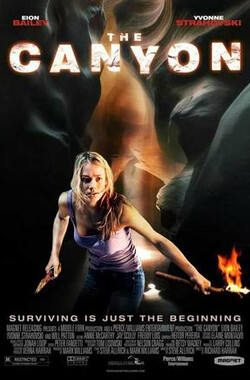 大峡谷 The Canyon (2009)