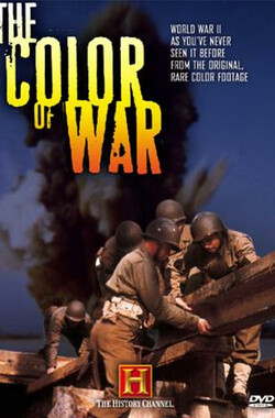 The Color of War (2001)