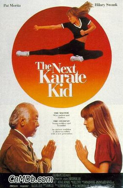 新小子难缠 The Next Karate Kid (1994)