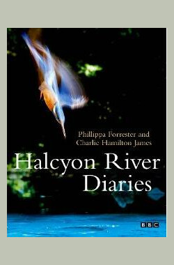 BBC 翠鸟河日记 BBC Halcyon River Diaries (2010)
