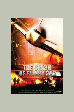 323航班空难调查 NTSB: The Crash of Flight 323 (2004)