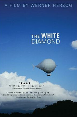 白钻石 The White Diamond (2004)