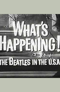 What's Happening! The Beatles in the U.S.A. (2004)