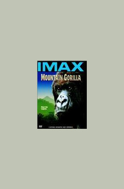 山地大猩猩 Mountain Gorilla (1992)