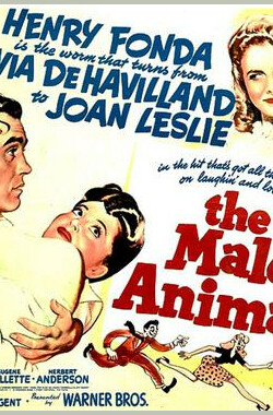 男儿本色 The Male Animal (1942)