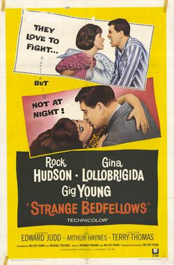 同床异梦 Strange Bedfellows (1965)