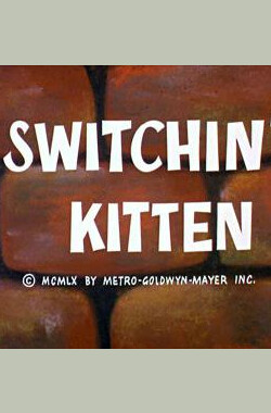 Switchin' Kitten