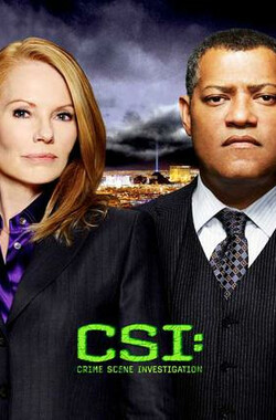 犯罪现场调查 第十一季 CSI: Crime Scene Investigation Season 11 (2010)