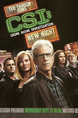 犯罪现场调查 第十二季 CSI: Crime Scene Investigation Season 12 (2011)