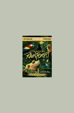 热带雨林 Tropical Rainforest (1992)