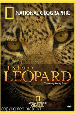 国家地理:豹的眼睛 National Geographic: Eye of the Leopard (2006)