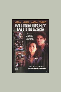 Midnight Witness (1993)