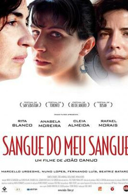 血亲之亲 Sangue do Meu Sangue (2011)