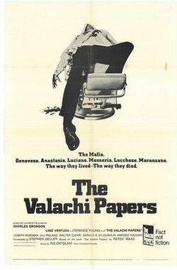 大时代 The Valachi Papers (1972)