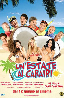 Un'estate ai Caraibi (2009)