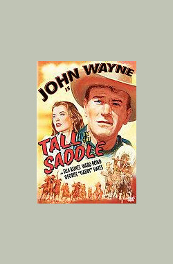 豪侠荡寇 Tall in the Saddle (1945)