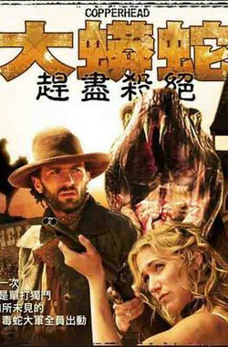 蛇机四伏 Copperhead (1983)
