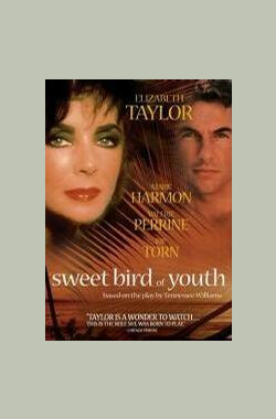 浓爱痴情 Sweet Bird of Youth (1989)