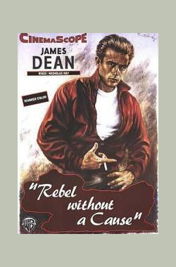 无因的反叛 Rebel Without a Cause (1955)