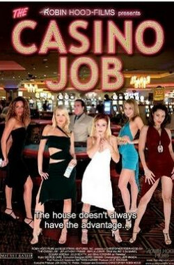 抢劫赌场 The Casino Job (2009)