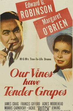 移民者 Our Vines Have Tender Grapes (1945)