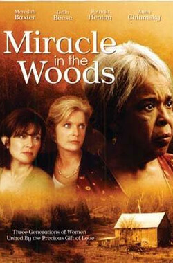 丛林奇迹 Miracle in the Woods (1997)