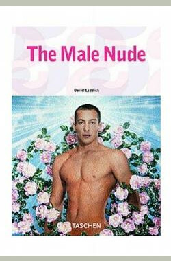 裸男 The Male Nude (2003)