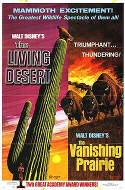 沙漠奇观 The Living Desert (1953)