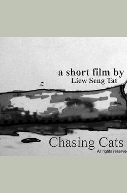 追逐猫与车 Chasing cats and cars (2008)