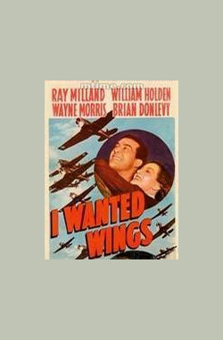 金粉银翼 I Wanted Wings (1941)