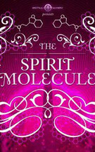 The Spirit Molecule