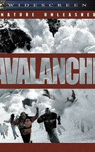 零下911 Nature Unleashed: Avalanche