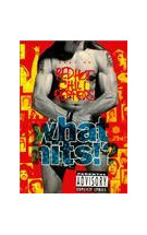 best of red hot chili peppers what hits!?/红辣椒乐队精选集