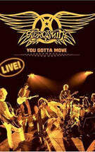 Aerosmith You Gotta Move