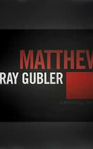 Meet Matthew Gray Gubler
